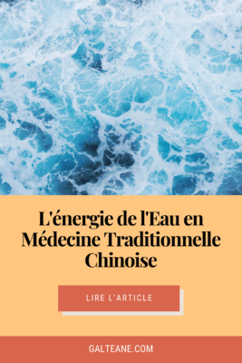 hiver-medecine-traditionnelle-chinoise